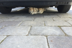 Pod autem je nejlepší schovka