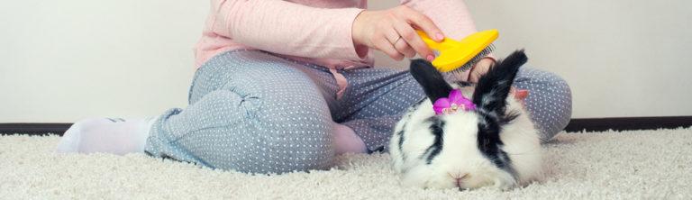 Česání králíčka - Ňufíček